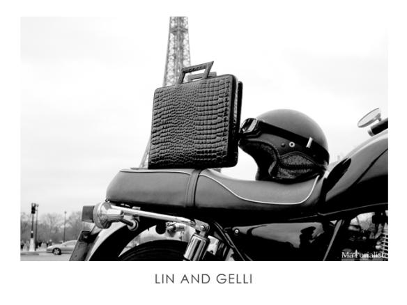linandgelli_blend